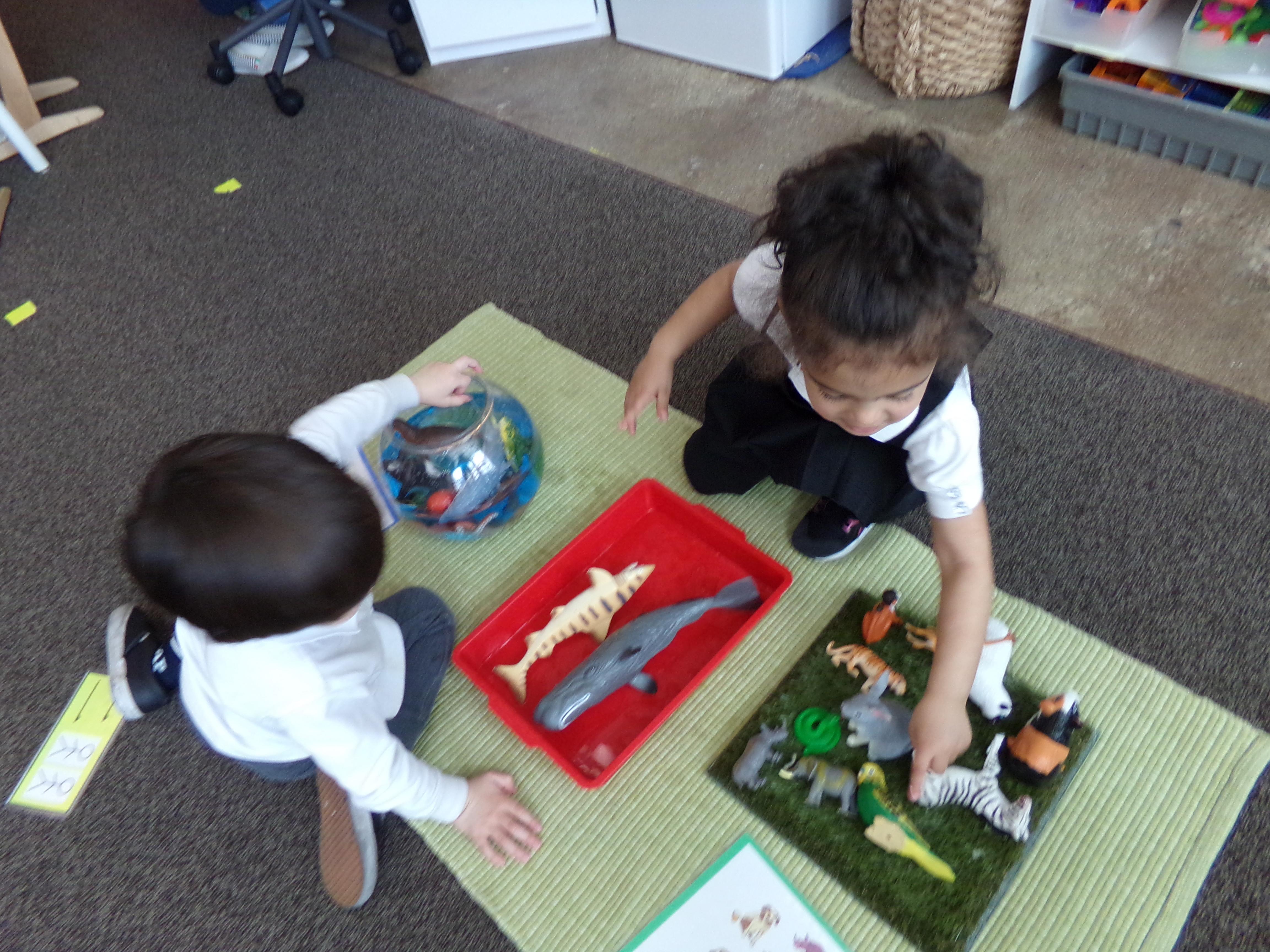 an exploration of ocean animals in nursery single blog detail
